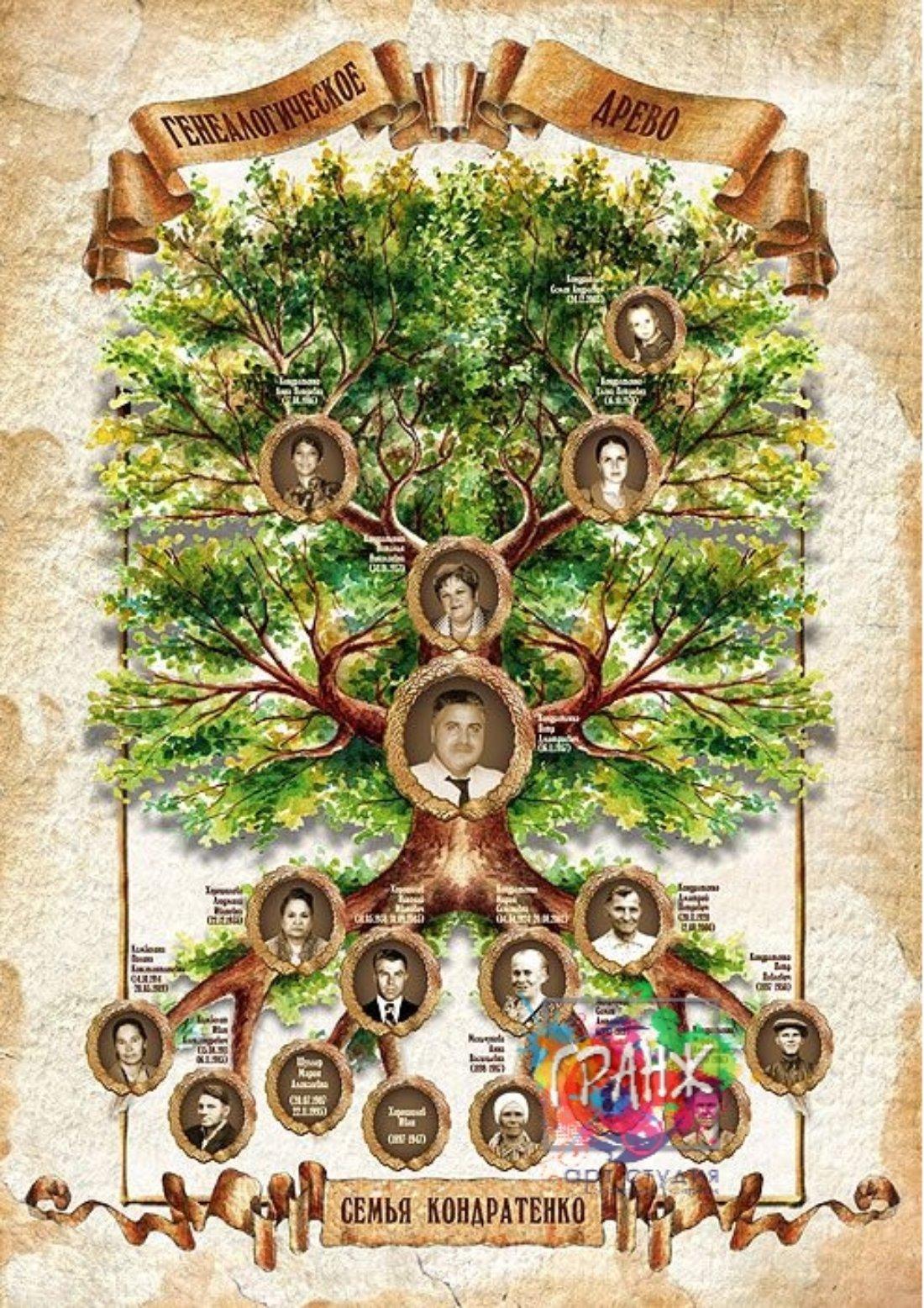 генеалогическое древо семьи
